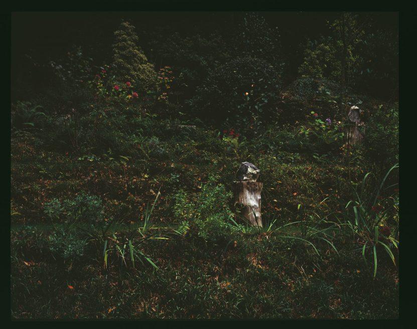 Nature (2014)