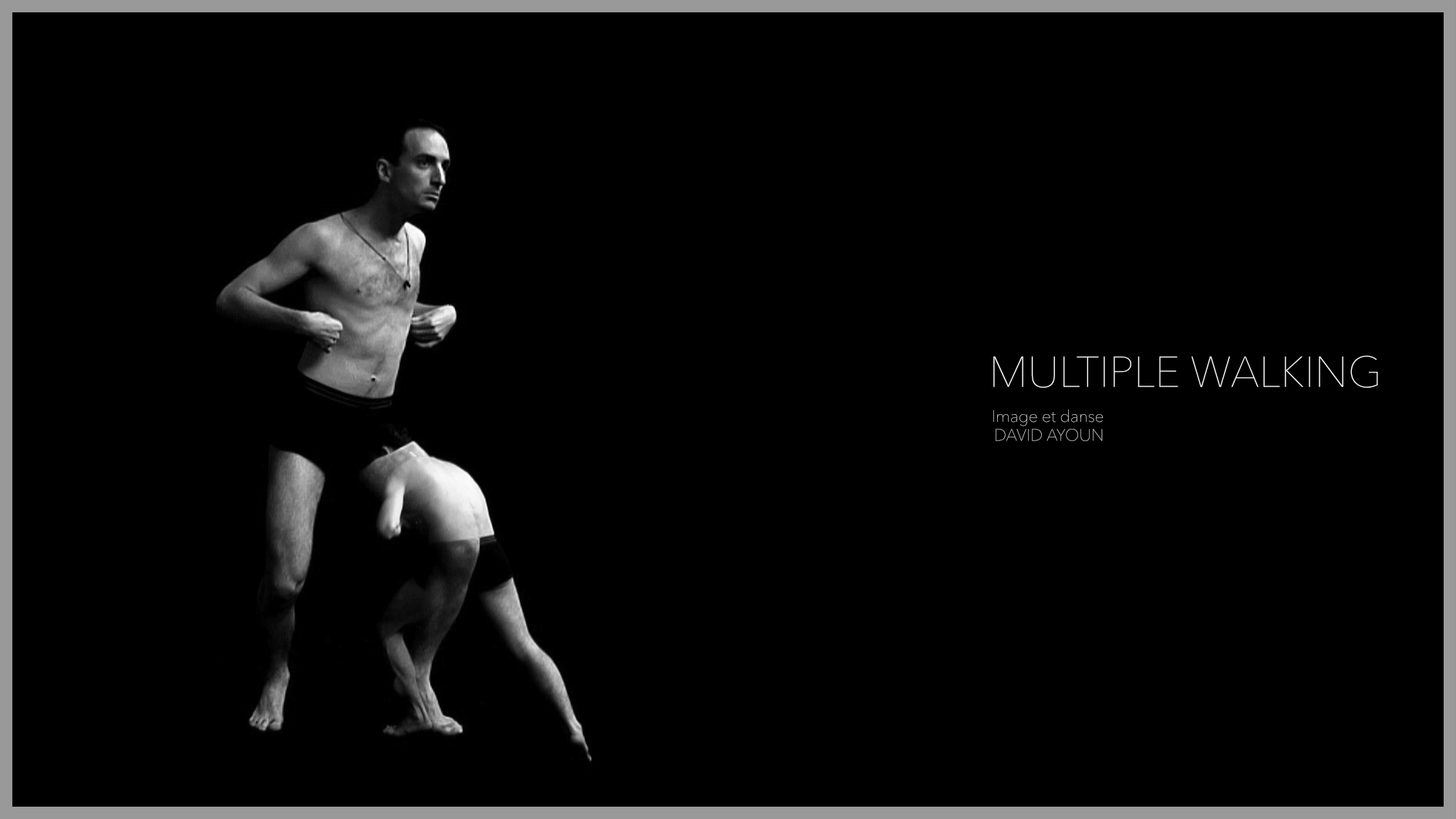 Multiple Walking (2010)
